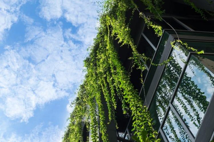 Arquitectura sostenible ¿es viable?