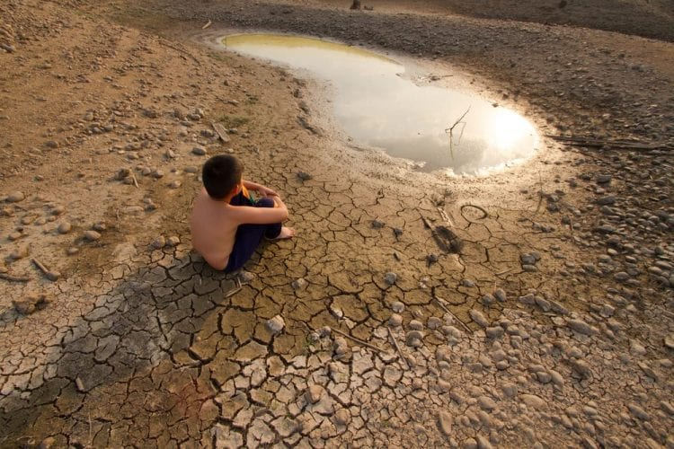 cine calentamiento global