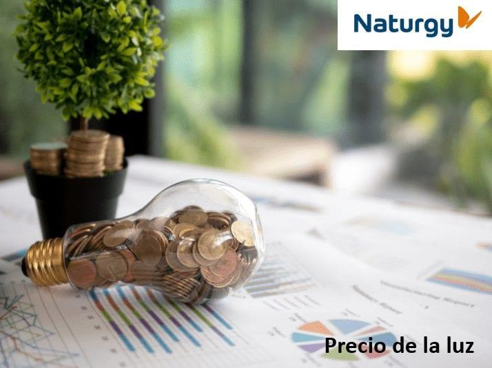 precio de la luz naturgy