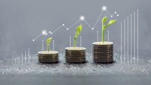 Árbol que crece en las monedas, Negocio de ahorro y crecimiento de las finanzas, pilas de monedas, csr, árboles que crecen en la pila de monedas, ahorro de dinero, gráfico verde, Concepto de dinero