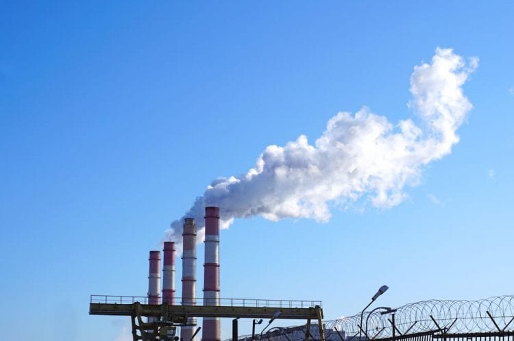 Endesa comienzas las pruebas con biocombustibles